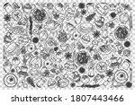 indian food doodle set.... | Shutterstock .eps vector #1807443466