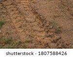 Small Bulldozer Tracks In The...