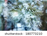 branch of a conifer with snow   Shutterstock . vector #180773210