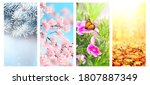 four seasons of year. set of...   Shutterstock . vector #1807887349