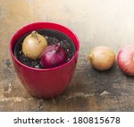Two Onions In Red Pot On Woode...