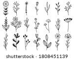 collection forest fern... | Shutterstock .eps vector #1808451139