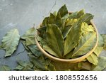 Bay leaves in a clay dish on a concrete worktop