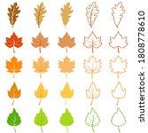 autumn leaf vector illustration ... | Shutterstock .eps vector #1808778610