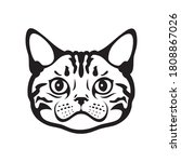 american shorthair cat face or... | Shutterstock .eps vector #1808867026