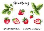strawberries watercolor image... | Shutterstock . vector #1809132529