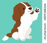 flat colored brown cavalier... | Shutterstock .eps vector #1809188266