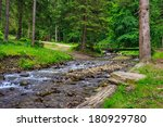mountain river with stones and moss  near the forest trail - stock photo