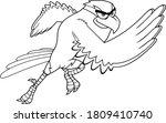 Black And White Hawk Bird...