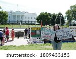 "Small photo of Washington, DC – September 5, 2020: Supporters of the ""Pizzagate"" QAnon conspiracy theory in Lafayette Park on a quest to inform the public about the truth involved in the debunked plot."