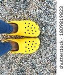 Ukraine   Summer 2020. Yellow...