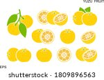 yuzu fruit logo. isolated yuzu... | Shutterstock .eps vector #1809896563