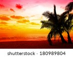 coconut palm trees silhouette... | Shutterstock . vector #180989804
