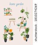 garden  flowers and plants... | Shutterstock .eps vector #1810274269