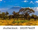 Kilimanjaro Is Africa S Highest ...