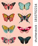 Butterfly Collection. Differen...