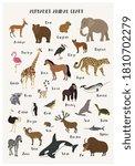 Alphabet Animal Chart. Vector...