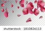 organic petals. rose template.... | Shutterstock .eps vector #1810826113