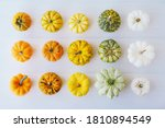 Colorful Mini Pumpkins On White ...