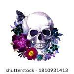 Human Skull With Dark Moth...