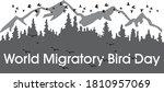 World Migratory Bird Day Vector ...