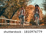 Young couple with bicycles in...