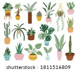 home potted plants. houseplants ... | Shutterstock .eps vector #1811516809