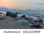 Rocky Seashore At Dawn. A Sea...