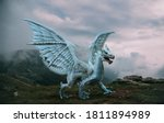 Fantasy dragon stands on the...