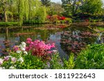 Beautiful Lily Pond In Spring...