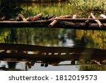 A Makeshift Wooden Bridge...
