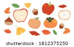 autumn crops  tree fruits. fall ... | Shutterstock .eps vector #1812375250