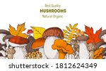 autumn design. edible mushrooms ... | Shutterstock .eps vector #1812624349