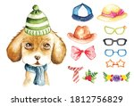 cute puppy with fashion... | Shutterstock .eps vector #1812756829