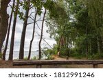 Wooden Bench On The Lakeside In ...