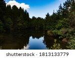 Mallards Pike Lake In The...
