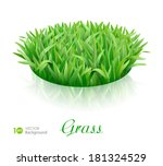 grass. vector eps 10. | Shutterstock .eps vector #181324529