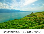 Panoramic Landscape Between...