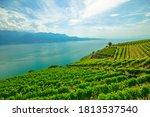 Panoramic Landscape Between...