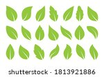 leaves icon vector set isolated ... | Shutterstock .eps vector #1813921886