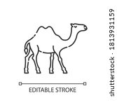 camel pixel perfect linear icon.... | Shutterstock .eps vector #1813931159