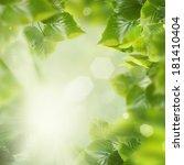 spring leaves | Shutterstock . vector #181410404