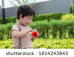 Small photo of Cute little child love eating sweets or snack. Handsome little boy enjoy eating gelatin or jelly. Adorable kid like eating snack. He feel happy when he eat favorite dessert