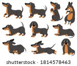 dachshund. cute dogs characters ... | Shutterstock .eps vector #1814578463