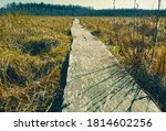 wooden path through the swamp | Shutterstock . vector #1814602256