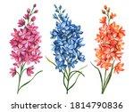 Watercolor Set Of Delphiniums ...