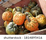 Many Pumpkins Or Gourds In...