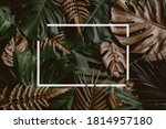 Tropical Green Leaves And Palm...