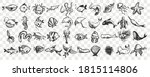 marine life doodle set.... | Shutterstock .eps vector #1815114806