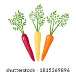 bright vector collection of... | Shutterstock .eps vector #1815369896